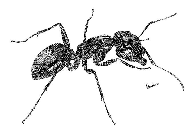 ant-6