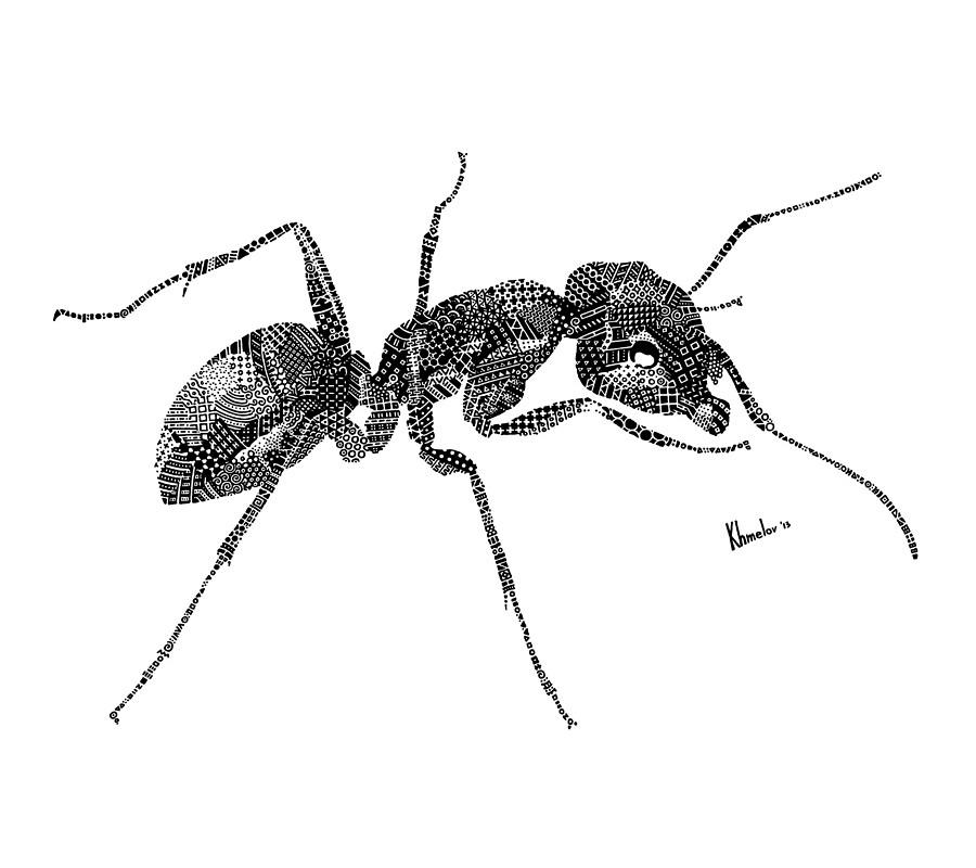 ant-square