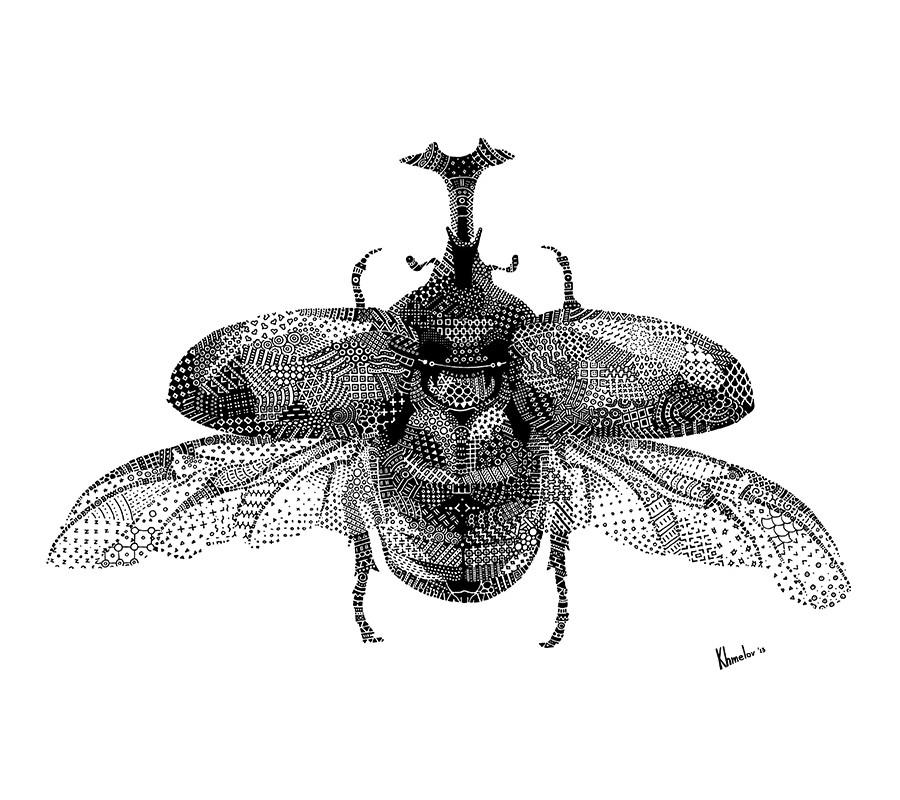bug_square